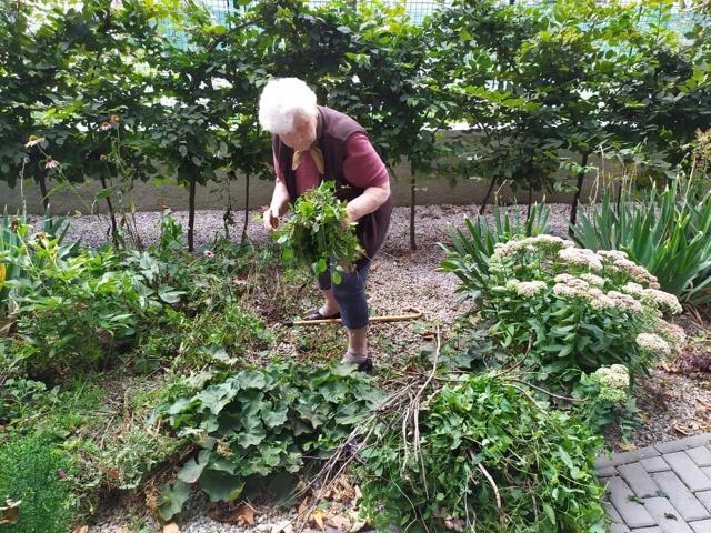 Naša krásna záhradka v Galenii